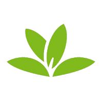 Application de reconaissance des plante PlantNet